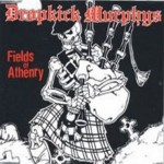 Fields of Athenry Cover